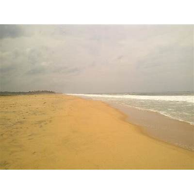 Golden Sand Beach- Fishes - Picture of Poovar Island