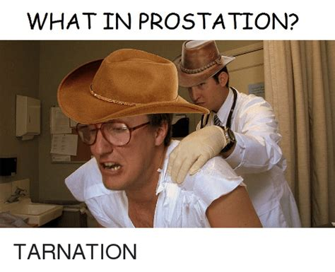 What Is A Meme - what in pro station tarnation dank meme on sizzle