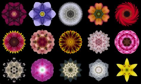 The 'meaning' Of Fifteen Flower Mandalas