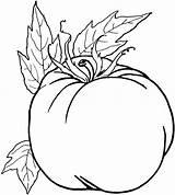 Coloring Vegetable Verduras Gambar Legumes Vegetables Imprimir Mewarnai Colorir Sayuran Sayur Fruits Dibujos Imagens Colorear Printable Coloriage Fruit Untuk Pumpkin sketch template