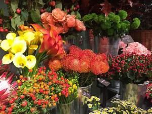10, Design, Elements, For, Beautiful, Flower, Arrangements