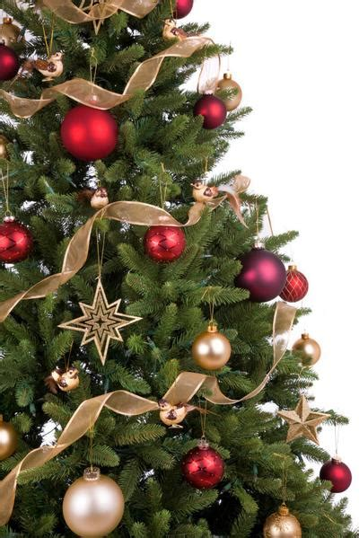 office christmas tree hire delivery london    uk