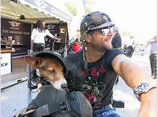 Lustige Motorradbilder Motorrad Fotos & Motorrad Bilder