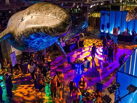 party monterey bay aquarium oct
