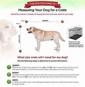 document moved With dog crate sizes