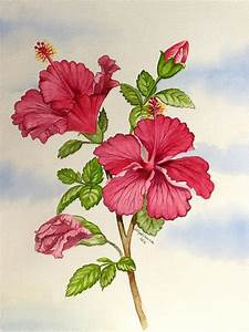 Related image   Watercoloring Painting Tips   Pinterest ...