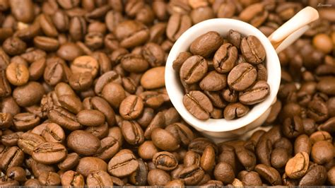 Lots Of Coffee Beans And Beans In Cup Closeup Wallpaper Starbucks Iced Coffee Caffeine Bottle Two Creams My House Laconia Nh 03246 Benefits Of For Face Dark Roast Javita Grande Price