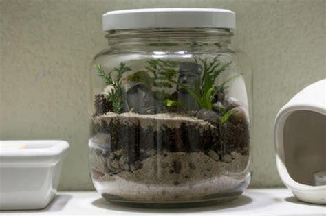 terrarium pour plantes tuto pour le faire et plus de 70 mod 232 les