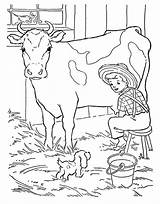 Coloring Cow Farmer Milking Dog His Farm Little Animals Job Tractor Template sketch template