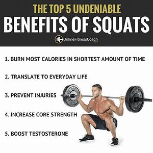 Squats  The King Of All Exercises