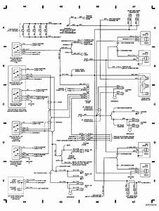 Back Up Light Wiring Diagram