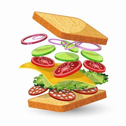 Sandwich Ingredients Salami Vector Clipart Emblem Lettuce