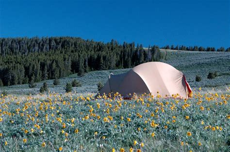 Camping — The Pryor Mountains