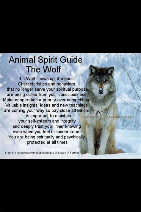 Wolves Spirit Animal Meaning