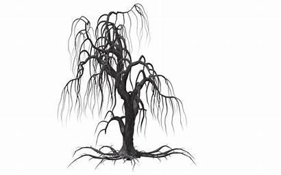 Creepy Vines Tree Clipart Transparent Drawing Fantasy