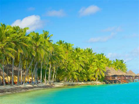 island  akitua aitutaki cook islands bungalow tropical