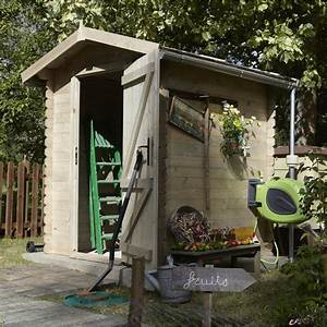 Abri De Jardin Leroy Merlin : abri de jardin bois bex m mm leroy merlin ~ Melissatoandfro.com Idées de Décoration