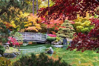 Manito Park Fall Koi Pond Bridge Colors