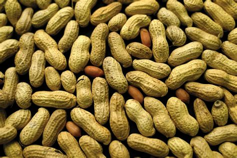 Peanut Allergy Treatment The Earlier In Childhood The