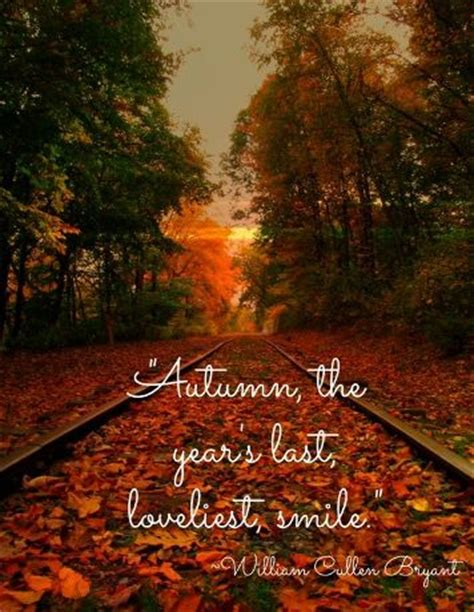 fall season quotes happy fall quotes 2016 fall y all autumn quotes fall season quotes fall leaves quotes