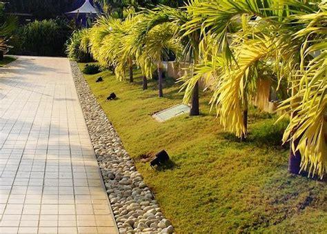 landscape design india indian attractive landscape design home landscaping
