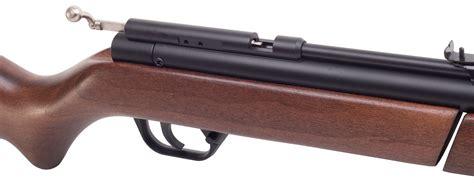 honest crosman benjamin   air rifle review air gun