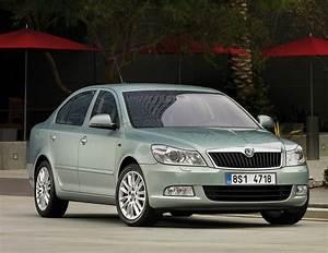 Voiture Familiale Occasion : voiture familiale d 39 occasion brown ~ Maxctalentgroup.com Avis de Voitures