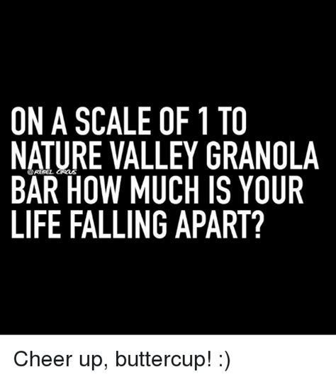 Nature Valley Meme - nature valley granola bar meme 28 images granola bar meme pictures to pin on pinterest