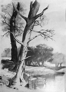 Pencil and Canvas: Landscape in pencil.