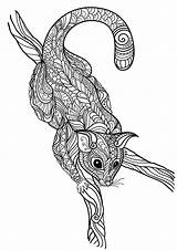 Coloring Pages Opossum Advanced Adults Animal Print Coloringtop sketch template