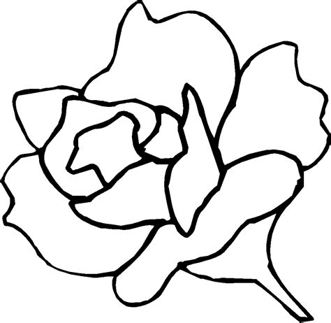 rose printable  color clipart  clipart