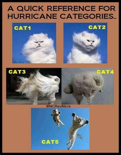 Hurricane Memes - 25 best ideas about hurricane memes on pinterest tornado meme traffic humor and memes about life