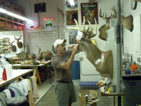 Taxidermy Studio Helps Hunters Relive Memories | Affton ...