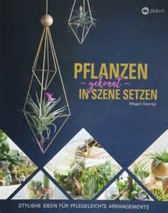 In Szene Setzen by Pflanzen Gekonnt In Szene Setzen Unter Der