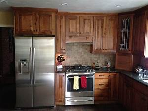 Kraftmaid cabinets rustic birch for Kitchen cabinets lowes with river birch wall art