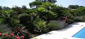 Massif Autour Piscine : plantes m dit rann enes autour de la piscine bandeau accueil ~ Farleysfitness.com Idées de Décoration