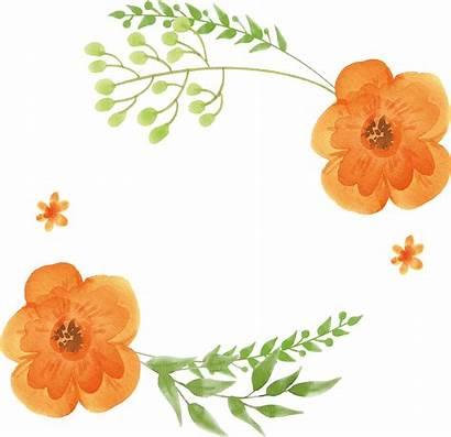 Watercolor Flower Clipart Peach Coral Transparent Flowers