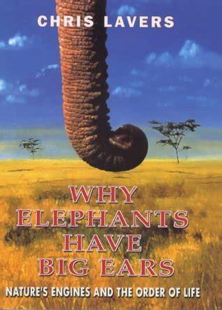 elephants  big ears  chris lavers