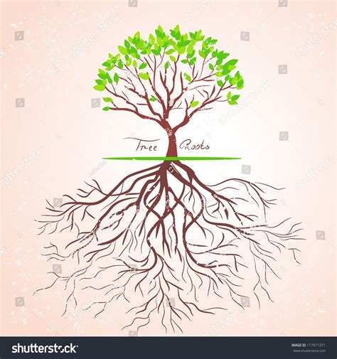 illustration tree roots retro style stock vector