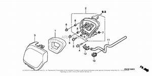 Honda Engine Gx35 Parts Diagram