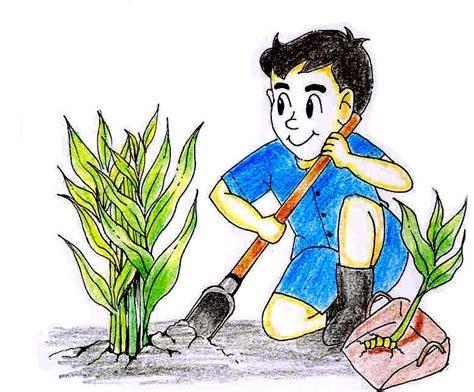 การขยายพันธุ์พืชด้วยหัวและหน่อ