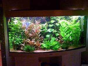 Fluval Vicenza 260 : fluval vicenza 260 flowgrow aquascape aquarien datenbank ~ Orissabook.com Haus und Dekorationen
