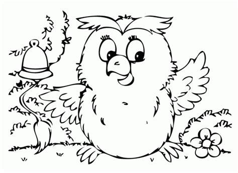 disegni da pitturare per adulti un gufo per bambini da stare e colorare disegni da