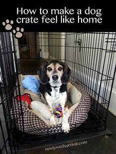 making your dog39s crate feel like home cratehappypets ad With why crate a dog