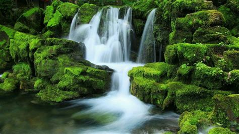 Waterfall Stream Between Algae Covered Rocks During Daytime Hd Nature Wallpapers Hd Wallpapers