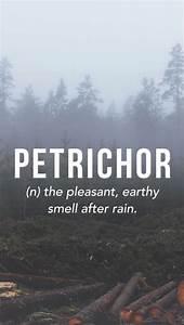 Petrichor. 1960... Petrichor