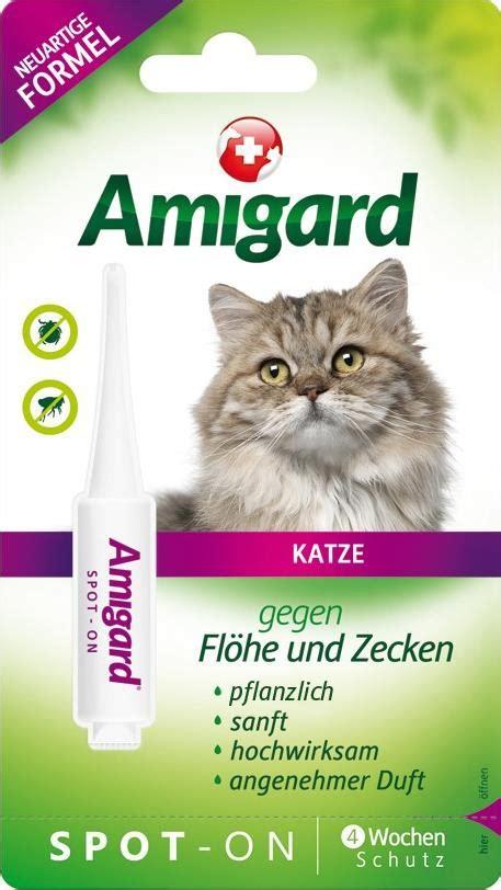 amigard spot  katze guenstig beim tierarzt kaufen