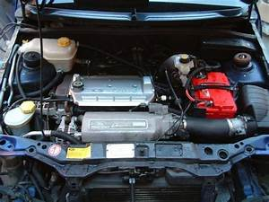 Ford Fiesta 1 25 Zetec Engine Diagram