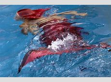 Massachusetts Real Live Mermaid Performer Mermaid Tail