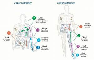 1000  Images About Lymphatic Technique On Pinterest